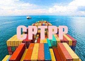 Trình Quốc hội Luật sửa một số Luật để thực thi Hiệp định CPTPP vào tháng 5
